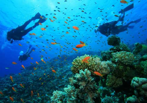 egipt-nurkowanie